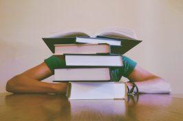 Les élèves à besoins éducatifs particuliers #1 : la précocité intellectuelle